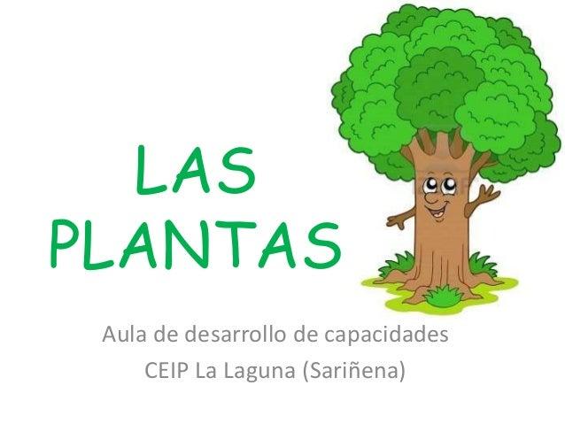 LAS PLANTAS Aula de desarrollo de capacidades CEIP La Laguna (Sariñena)