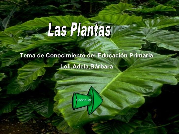 Las Plantas Tema de Conocimiento del Educación Primaria Loli,Adela,Bárbara Continuar