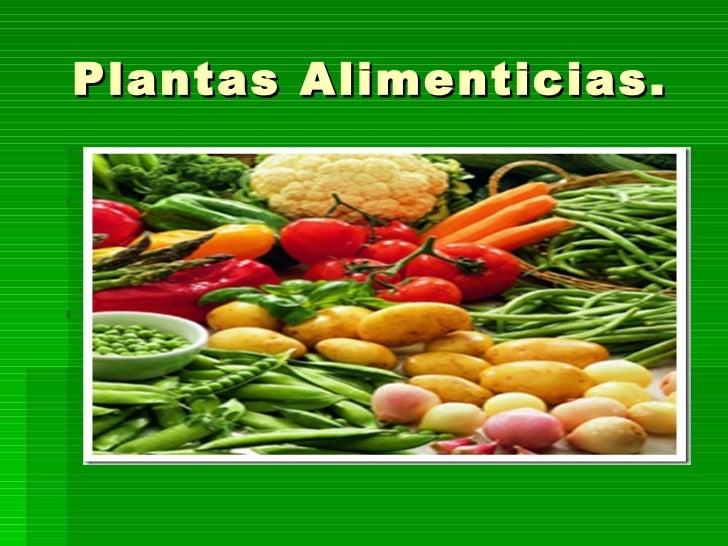 Las plantas alimenticias for Clasificacion de las plantas ornamentales