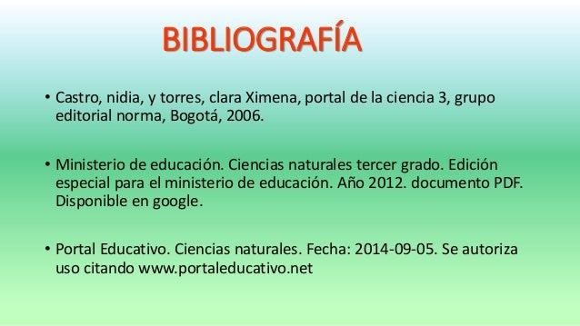 Las Plantas 66372140 on 1 C2 Ba Primaria 10