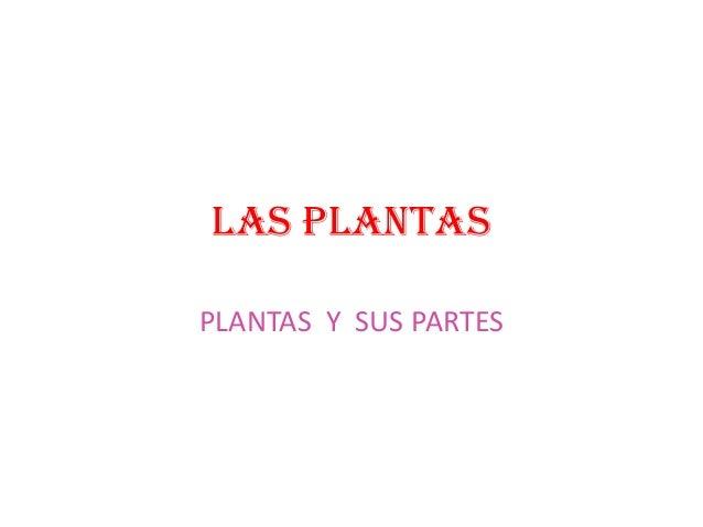 LAS PLANTASPLANTAS Y SUS PARTES