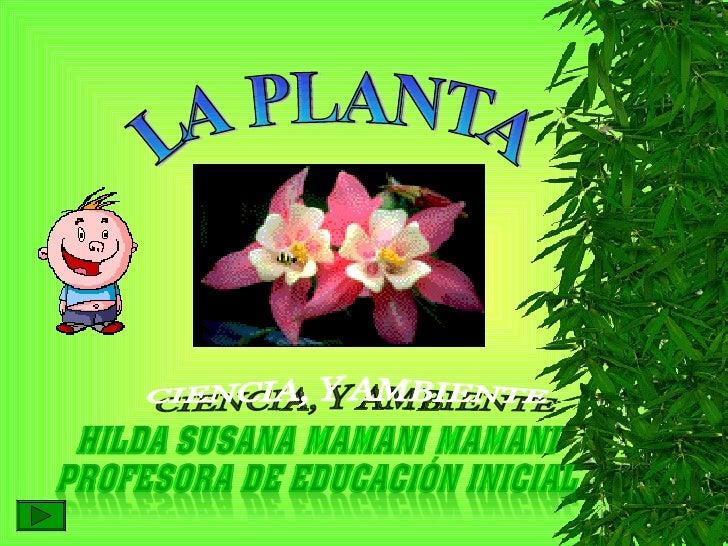 LA PLANTA CIENCIA, Y AMBIENTE
