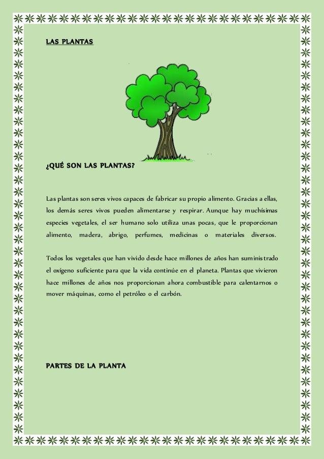 Las planta