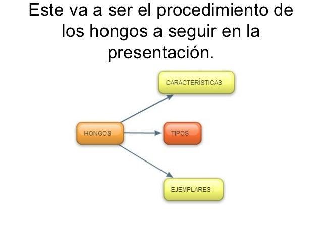Este va a ser el procedimiento de    los hongos a seguir en la          presentación.