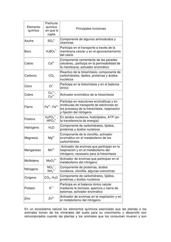 Las propiedades qu micas del suelo for Componentes quimicos del suelo