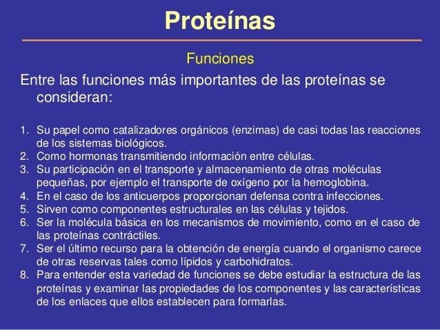 Proteinas por la chica - 2 6