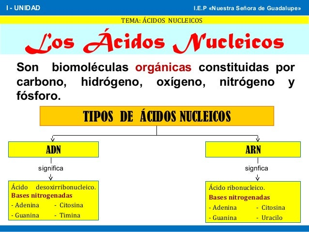 clases de anabolicos inyectables