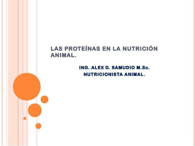LAS PROTEÍNAS EN LA NUTRICIÓN ANIMAL. ING. ALEX D. SAMUDIO M.Sc. NUTRICIONISTA ANIMAL.