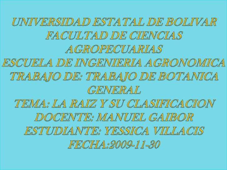 UNIVERSIDAD ESTATAL DE BOLIVARFACULTAD DE CIENCIAS AGROPECUARIASESCUELA DE INGENIERIA AGRONOMICATRABAJO DE: TRABAJO DE BOT...