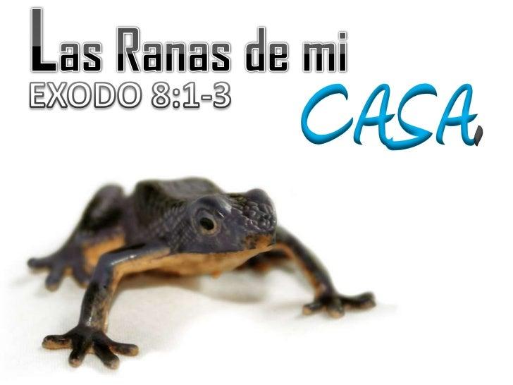 Las Ranas de mi<br />CASA.<br />EXODO 8:1-3<br />