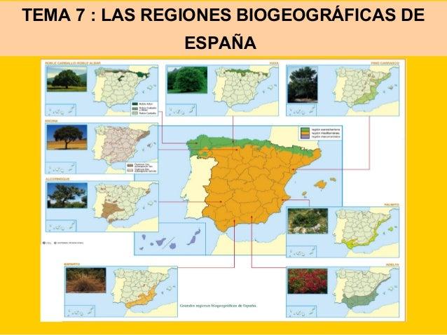 TEMA 7 : LAS REGIONES BIOGEOGRÁFICAS DE ESPAÑA