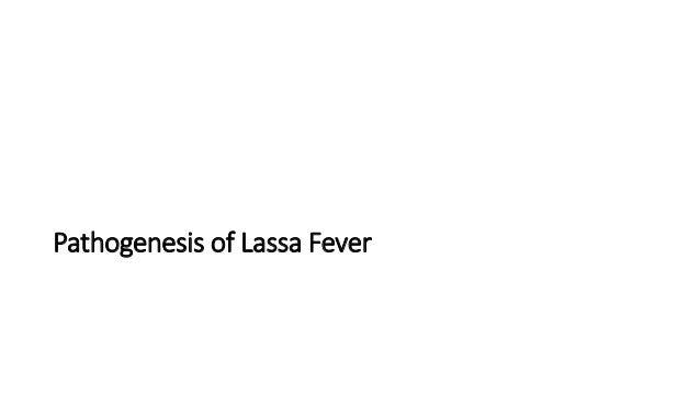 characteristics of the lassa virus