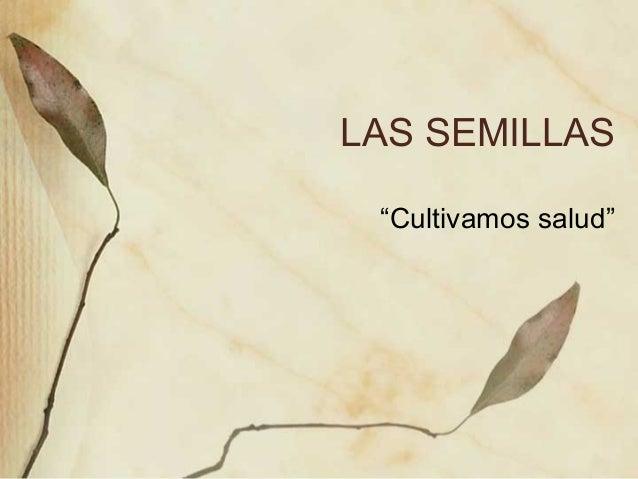 """LAS SEMILLAS """"Cultivamos salud"""""""
