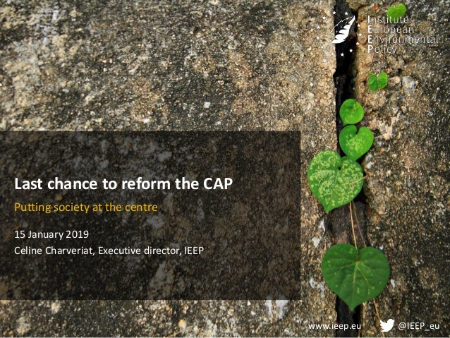 www.ieep.eu @IEEP_eu Last chance to reform the CAP Putting society at the centre 15 January 2019 Celine Charveriat, Execut...
