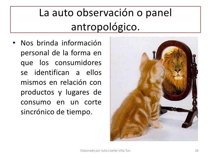 La auto observación o panel               antropológico. • Nos brinda información   personal de la forma en   que los cons...