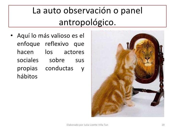 La auto observación o panel               antropológico. • Aquí lo más valioso es el   enfoque reflexivo que   hacen    lo...
