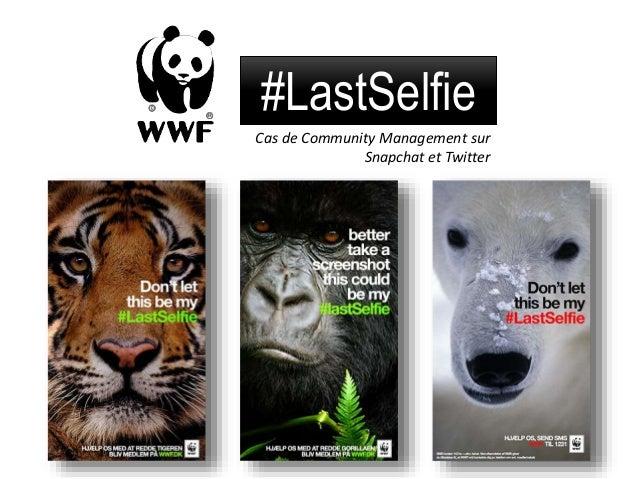 #LastSelfie Cas de Community Management sur Snapchat et Twitter