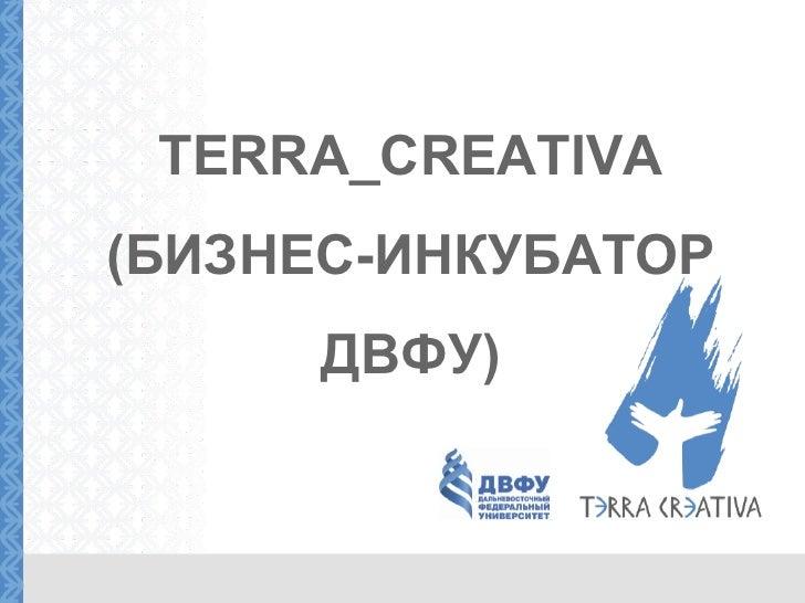 TERRA_CREATIVA (БИЗНЕС-ИНКУБАТОР ДВФУ )