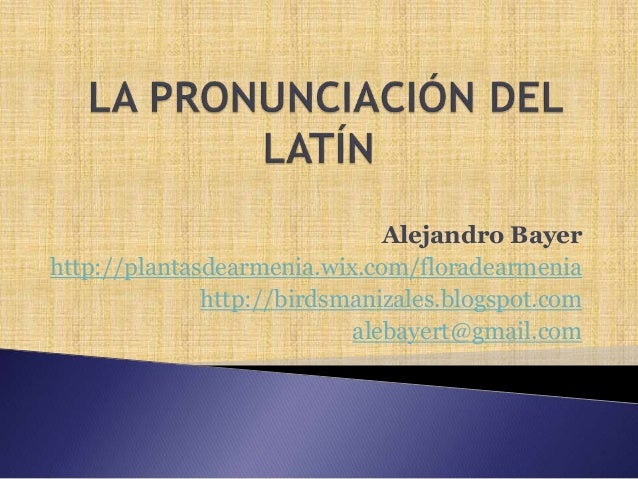 Alejandro Bayer http://plantasdearmenia.wix.com/floradearmenia http://birdsmanizales.blogspot.com alebayert@gmail.com