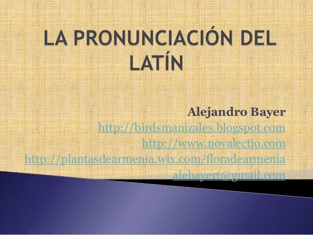 Alejandro Bayer http://birdsmanizales.blogspot.com http://www.novalectio.com http://plantasdearmenia.wix.com/floradearmeni...