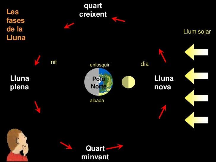quartLes           creixentfasesde la                                      Llum solarLluna        nit      enfosquir   dia...