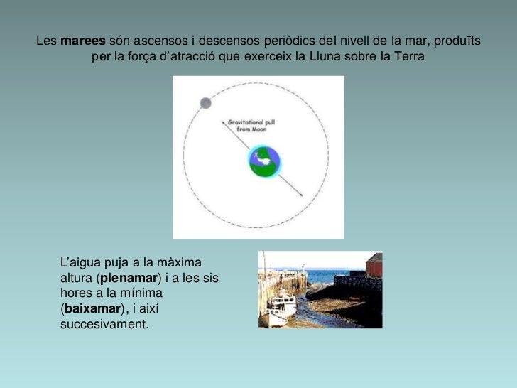 Les marees són ascensos i descensos periòdics del nivell de la mar, produïts        per la força d'atracció que exerceix l...