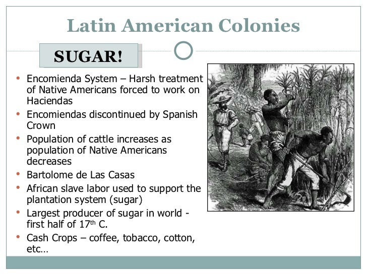 Latin america and slavery essay