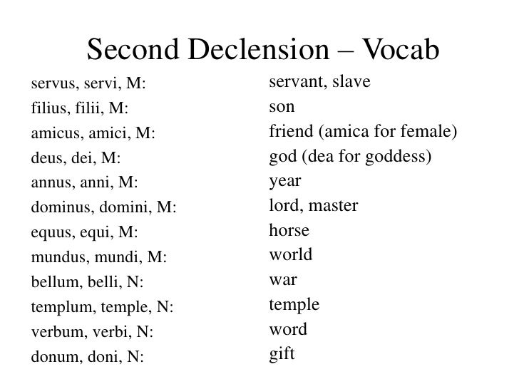 Latin I lesson 05 share  |Latin Word Endings