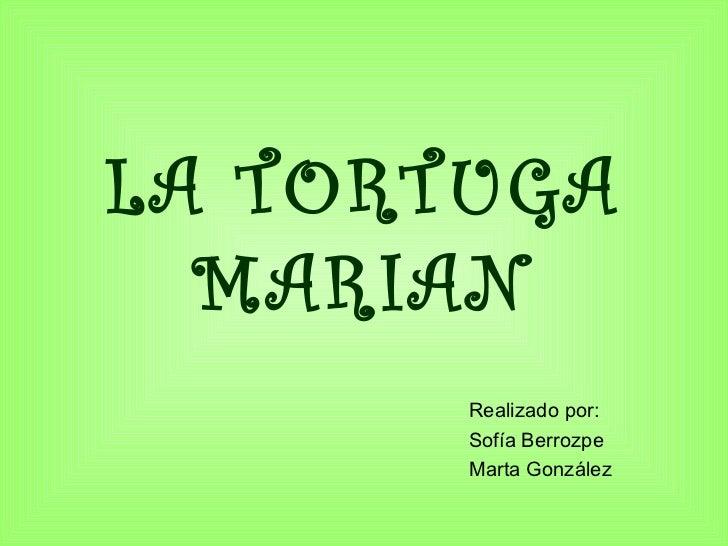 LA TORTUGA MARIAN Realizado por: Sofía Berrozpe Marta González