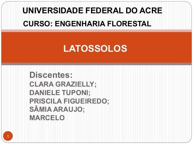 UNIVERSIDADE FEDERAL DO ACRE CURSO: ENGENHARIA FLORESTAL LATOSSOLOS Discentes: CLARA GRAZIELLY; DANIELE TUPONI; PRISCILA F...