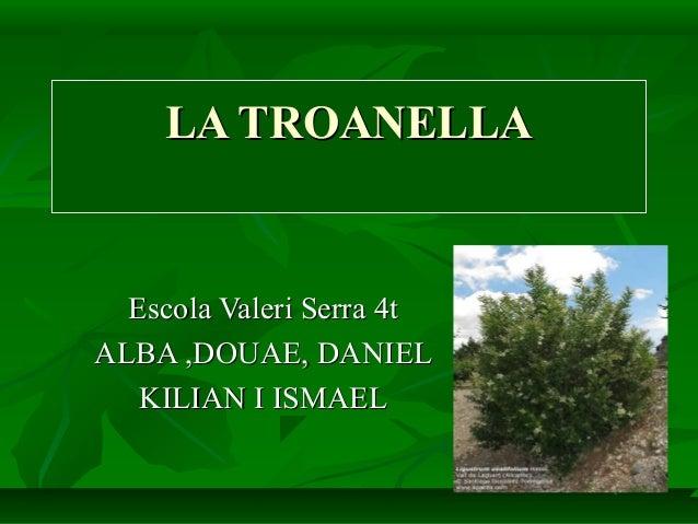 LA TROANELLALA TROANELLA Escola Valeri Serra 4tEscola Valeri Serra 4t ALBA ,DOUAE, DANIELALBA ,DOUAE, DANIEL KILIAN I ISMA...