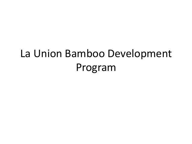 La Union Bamboo Development           Program