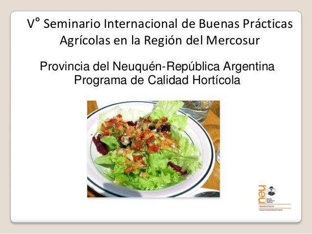 V° Seminario Internacional de Buenas Prácticas Agrícolas en la Región del Mercosur  Provincia del Neuquén-República Argent...