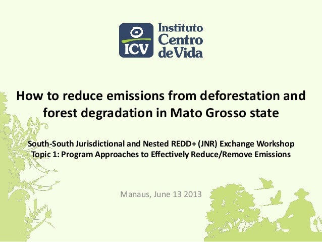 How to reduce emissions from deforestation and forest degradation in Mato Grosso state South-South Jurisdictional and Nest...