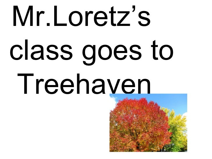 Mr.Loretz's class goes to  Treehaven