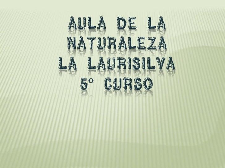AULA DE LA NATURALEZALA LAURISILVA  5º CURSO