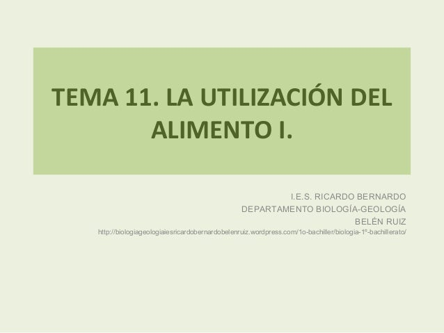 TEMA 11. LA UTILIZACIÓN DEL ALIMENTO I. I.E.S. RICARDO BERNARDO DEPARTAMENTO BIOLOGÍA-GEOLOGÍA BELÉN RUIZ http://biologiag...