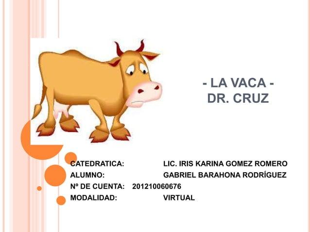 - LA VACA - DR. CRUZ CATEDRATICA: LIC. IRIS KARINA GOMEZ ROMERO ALUMNO: GABRIEL BARAHONA RODRÍGUEZ Nº DE CUENTA: 201210060...
