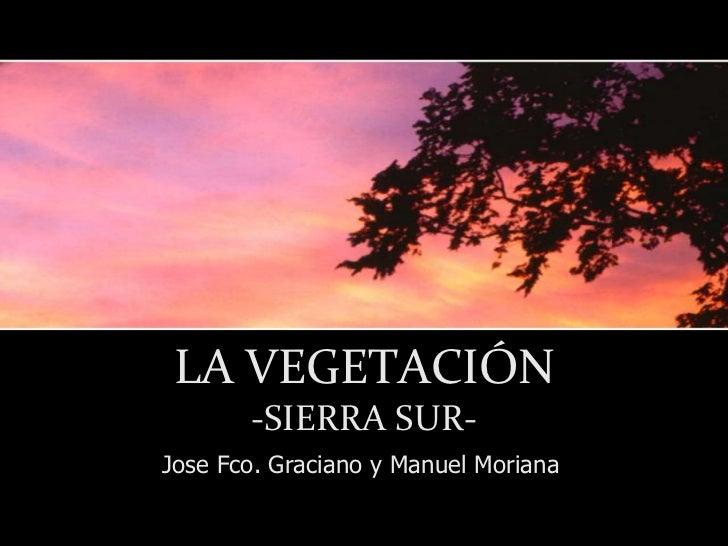 LA VEGETACIÓN       -SIERRA SUR-Jose Fco. Graciano y Manuel Moriana