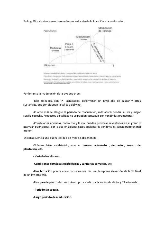 La vid. fisiología .