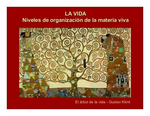 LA VIDALA VIDA Niveles de organizaciNiveles de organizacióón de la materia vivan de la materia viva El árbol de la vida - ...