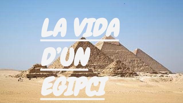 LA VIDA D'UN EGIPCI