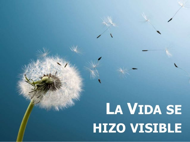 LA VIDA SE HIZO VISIBLE