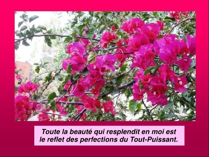 Toute la beauté qui resplendit en moi est <br />le reflet des perfections du Tout-Puissant.<br />