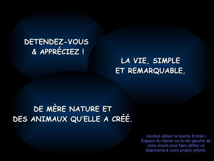 DETENDEZ-VOUS  & APPRÉCIEZ ! LA VIE, SIMPLE ET REMARQUABLE, DE MÈRE NATURE ET DES ANIMAUX QU'ELLE A CRÉÉ. Veuillez utilise...
