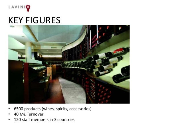 Lavinia cross border presentation Slide 3