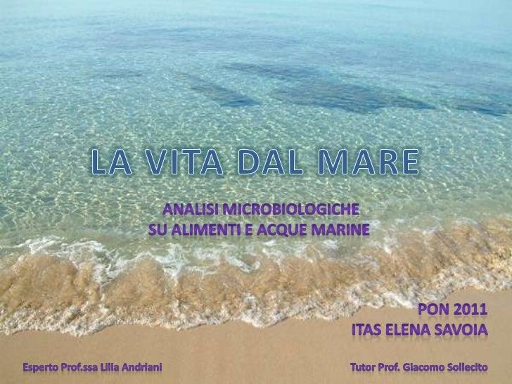 LA VITA DAL MARE<br />Analisi microbiologiche<br />Su alimenti e acque marine<br />PON 2011<br />ITAS ELENA SAVOIA<br />Es...