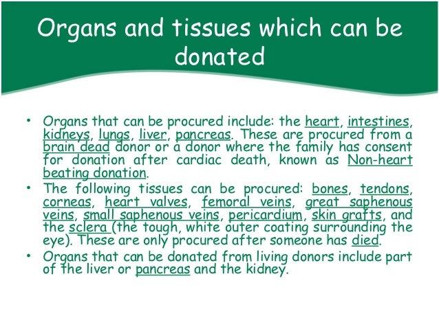 Tag: transplantation