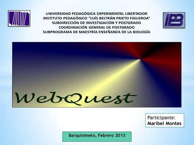 Participante:                             Maribel MontesBarquisimeto, Febrero 2013