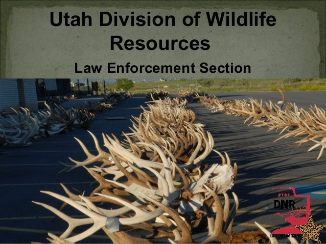 Utah Division of Wildlife Resources Law Enforcement Section